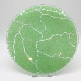 Rosenthal – Studio Line – ontbijt bord glas 22 cm. groen – Davide Pizzigoni