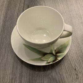 asa- aloe vera- fine bone china- kop & schotel